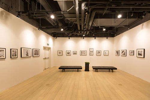 书画展厅,展厅设计图片